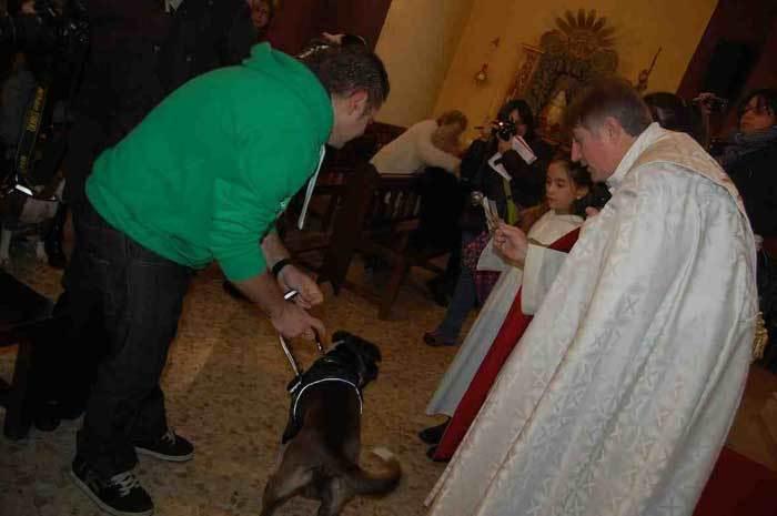 Bedición de un perro por la festividad de San Antón.