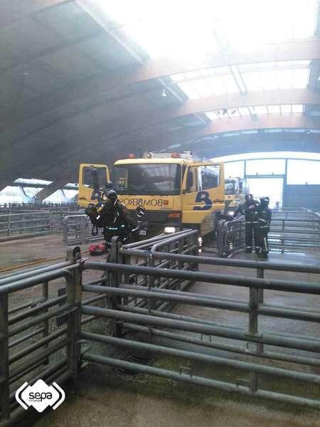 Los Bomberos sofocan el incendio en el Mercado de Ganados de Pola de Siero