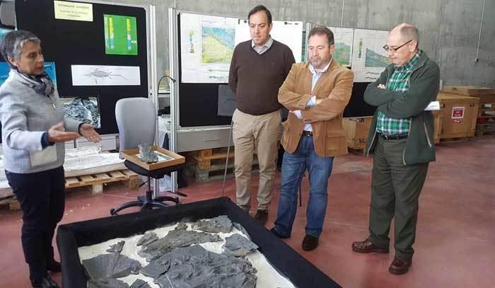 Expertos y alcaldes observan el fósil.