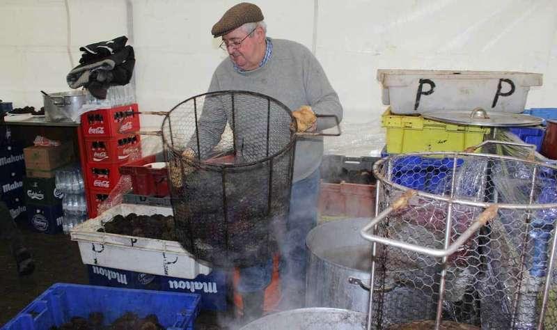Cociendo oricios en Huerres.