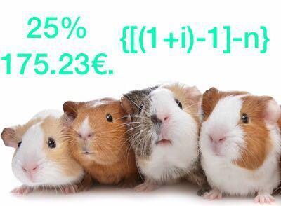 Cobayas de la economía