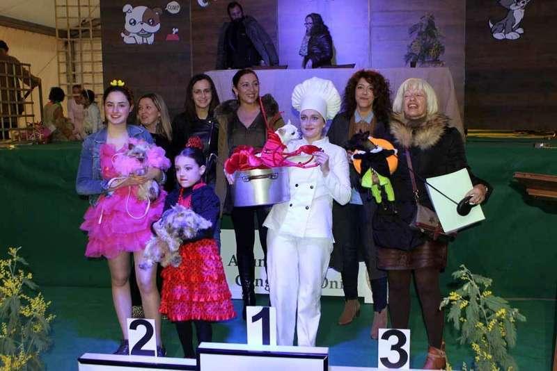 Cocinando a Langostiti, ganador del Carnaval de Mascotas de Cangas de Onís