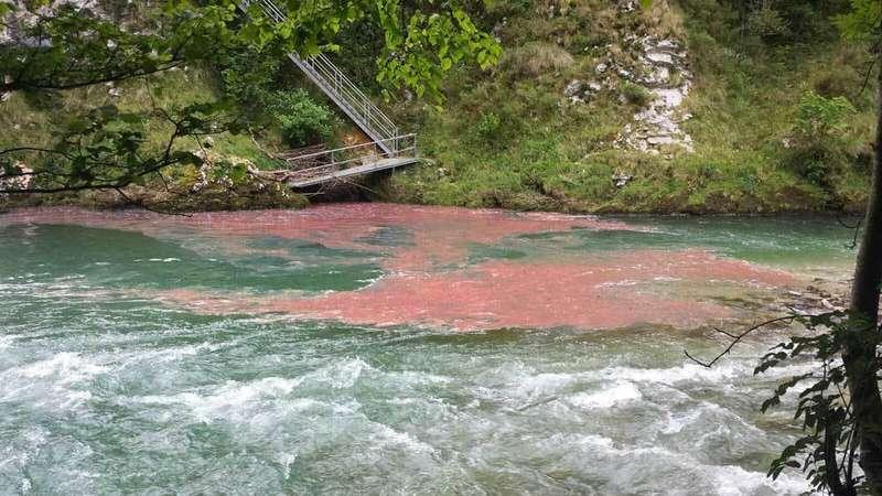 Manchas de combustible en el río Cares