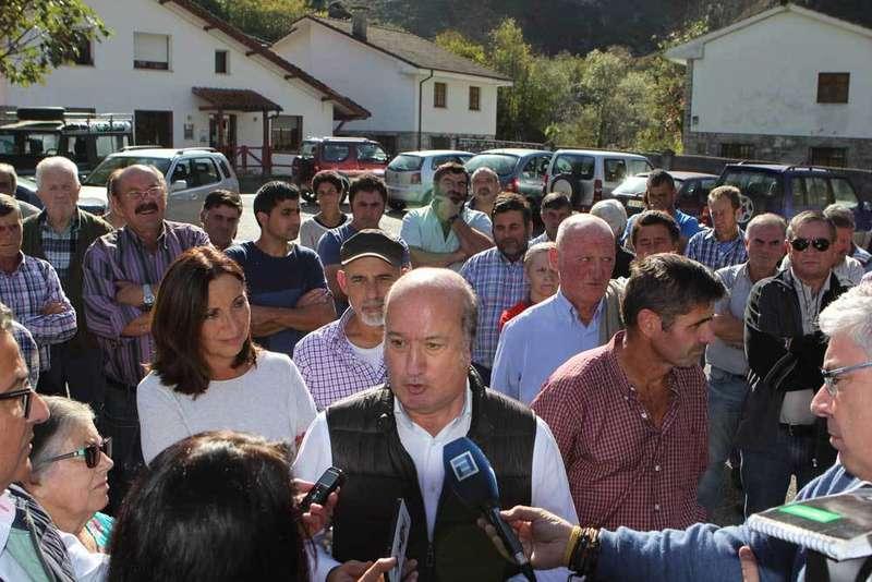 El Partido Popular pide que se maten, como mínimo, la mitad de los lobos de Asturias