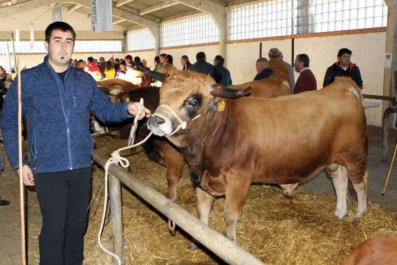 Palombu alcanzó los 2.600 euros en la subasta de Aseamo celebrada en Cangas de Onís