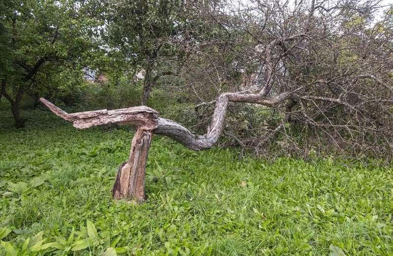 viento-asturias-rachas