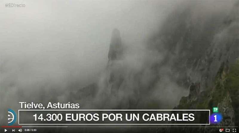 Queso-Cabrales-España-directo-TVE