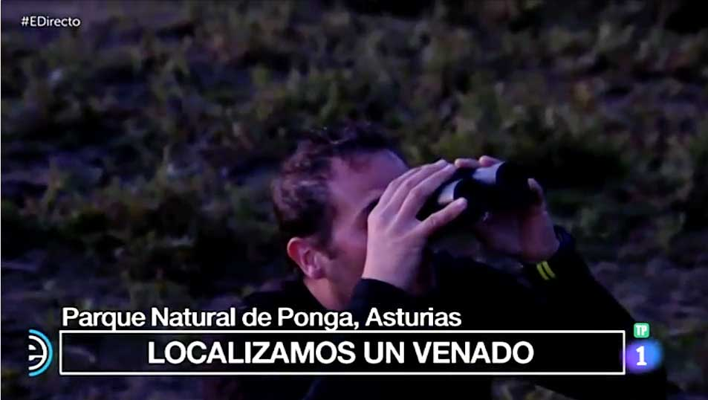 La Berrea de Ponga en España Directo de TVE