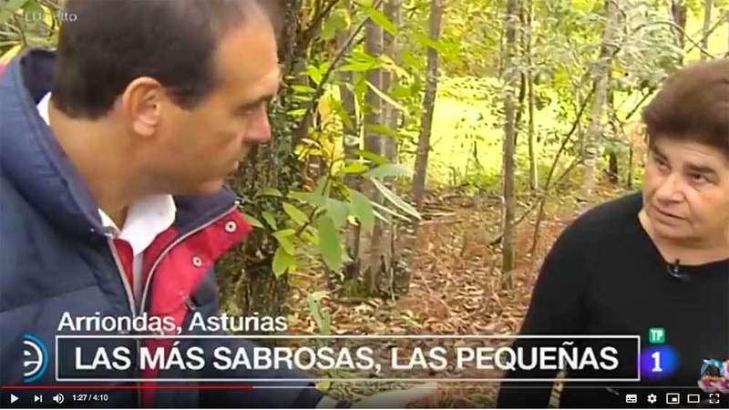 Las castañas de Parres protagonistas en Televisión Española