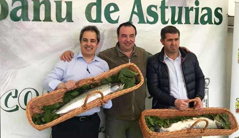 El Bosque de Oviedo se hizo con el Campanu del Cares y de Asturias por 10.000 euros