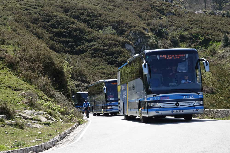 autobuses-plan-transporte