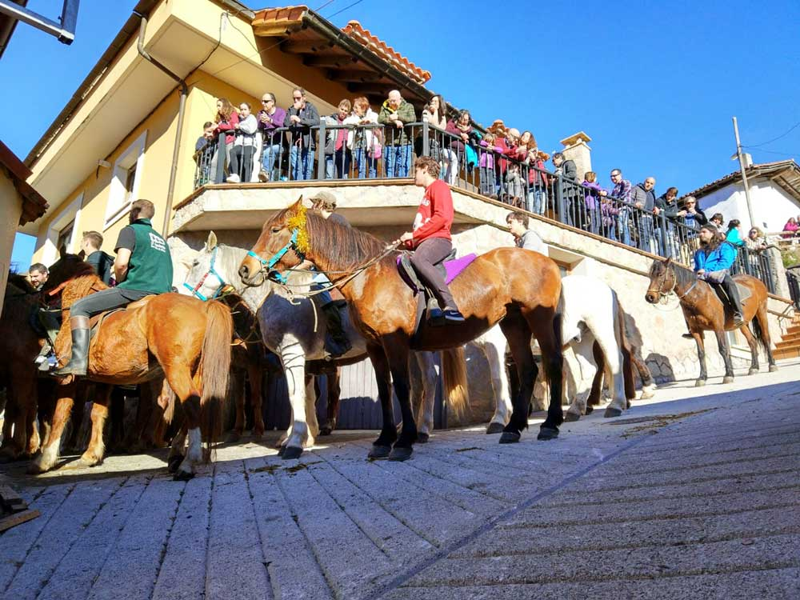 mozos-caballos-aguinaldo-ponga