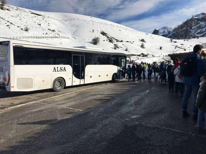 alsa-plan-transporte-lagos-covadonga