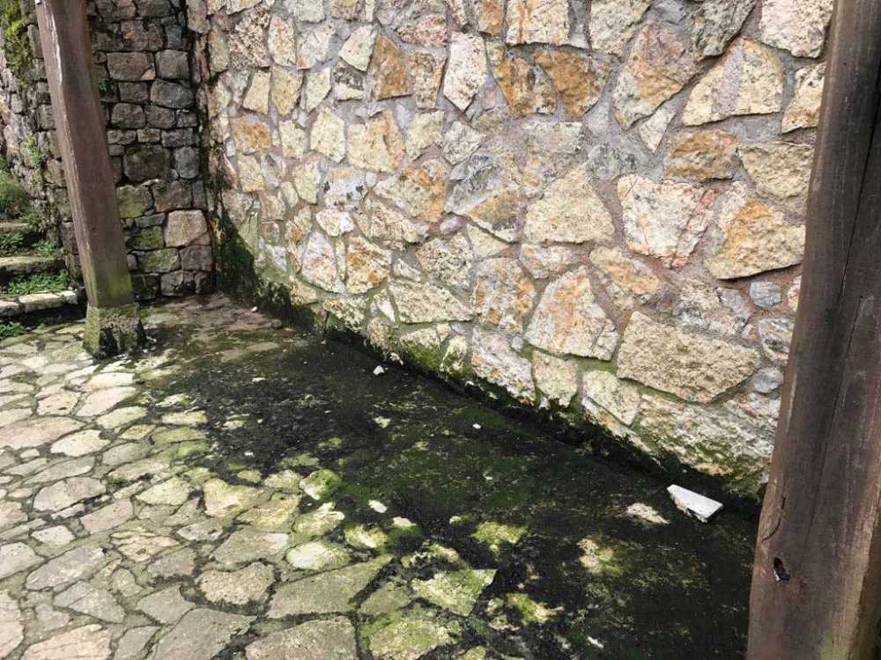 buferrera-lagos-covadonga