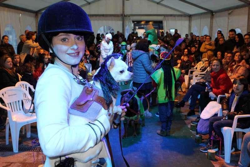 carnaval-mascotas-jinete