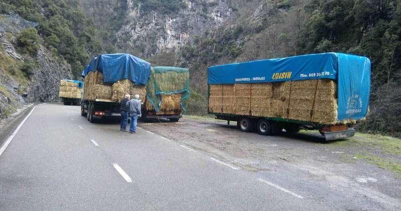 camiones-vidosa-desfiladero-beyos