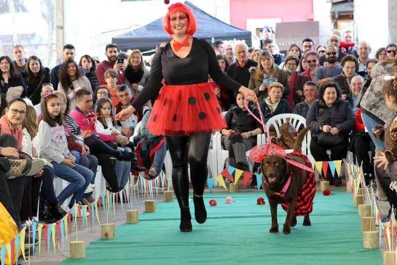 carnaval-mascotas-cangas