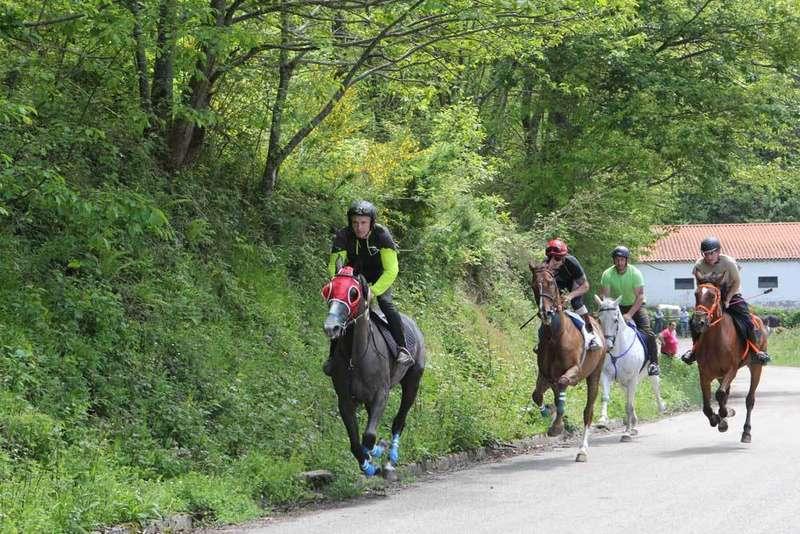 carrera-caballos-ponga-beleño