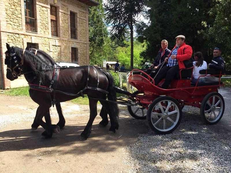 feria-abril-infiesto-coche-caballos