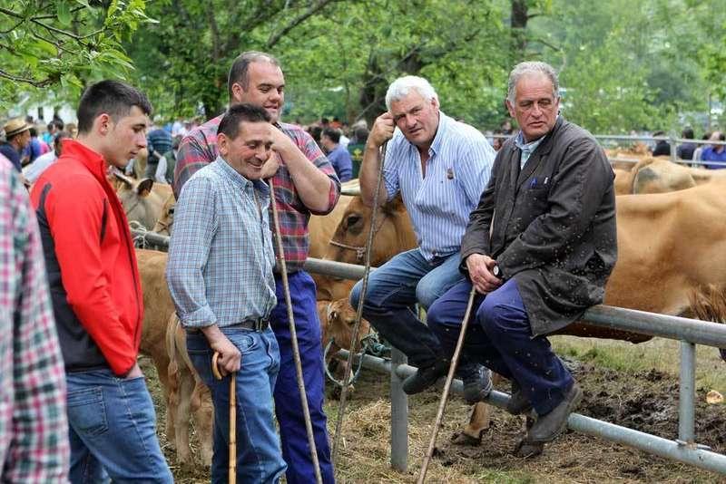 feriona-corao-ganaderos