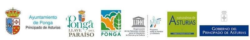 ponga-reserva-biosfera