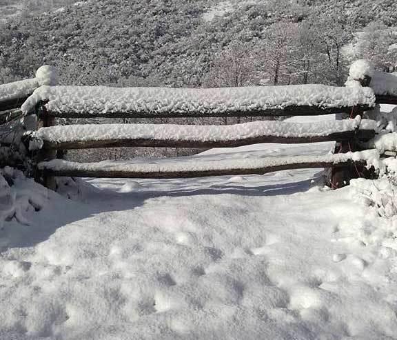 nevada parque natural de ponga