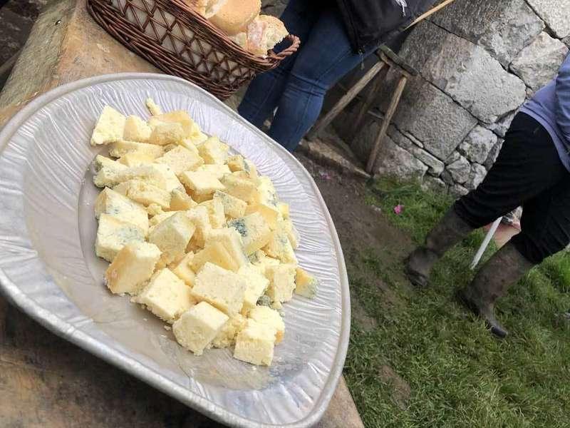 queso-gamoneu-gumartini